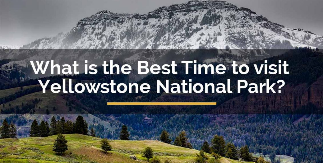 best time to visit yellowstone