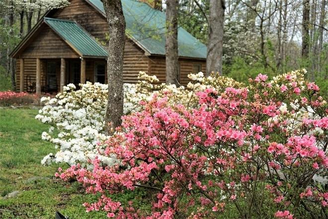 Cades Cove cabin
