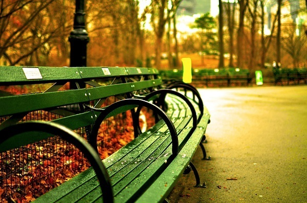 New York Central Park bench