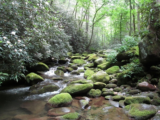 best time to visit Smoky Moutains for waterfalls spring